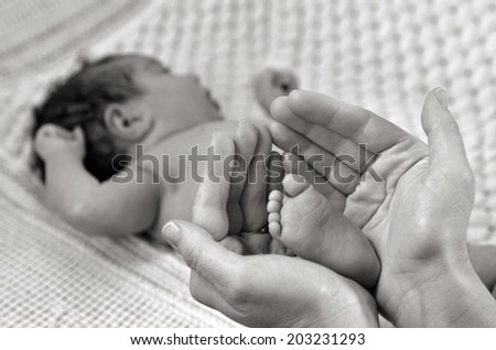 Hand of a young mother touch her newborn baby foot (3 week old).(BW) copyspace