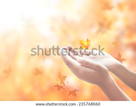 Hand of man with hands raised to beautiful sunset background. - stock photo