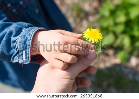 Hand of mother handing a dandelion in child - stock photo