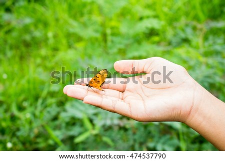 Hand of the girl with a butterfly. background art
