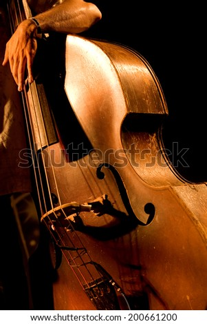 Hand of the musician on the contrabass at the live concert - stock photo