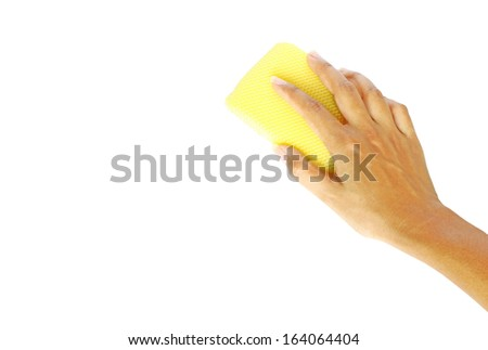 Hand on sponge - stock photo
