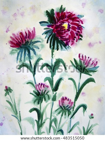 Hand painted in watercolour pink autumn flowers - asters.