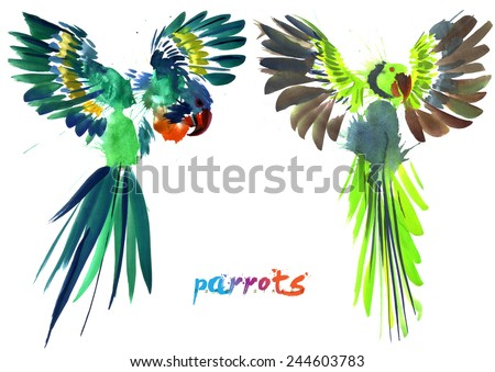 hand painted parrots