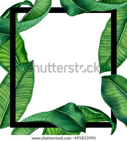 Hand Painted Watercolot Botanical Tropical Leaves Ilustración de ...