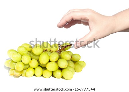 Hand pulling to the grapes cluster isolated on the white background  - stock photo