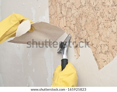 Wall Paper Remover removing wallpaper stock images, royalty-free images & vectors