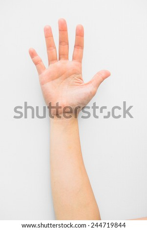 Hand solated on white background - stock photo