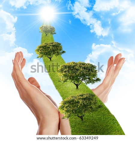 Hand, the line of grass, trees against the blue sky. Symbol of environmental protection