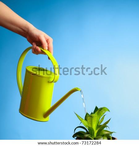 hand watering a plant with watering-can - stock photo