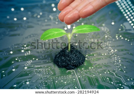 hand watering a tree growing on a computer circuit board / green it / green computing / csr / it ethics - stock photo