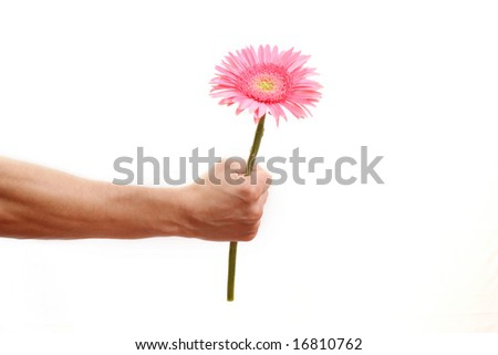 Hand with a flower