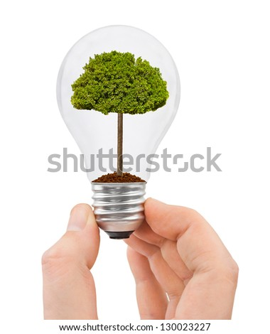 Hand with bulb and tree isolated on white background