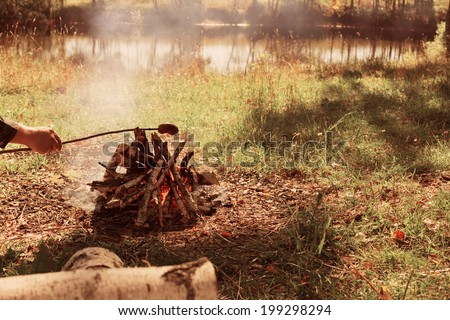 hand with food and bonfire - stock photo