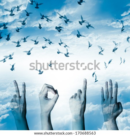 hand with new year 2014 abstract with doves flying on blue sky and cloud background