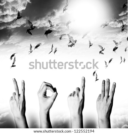 hand with new year 2013 abstract with doves flying on sky and cloud, black and white background - stock photo