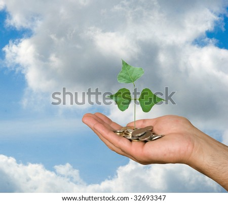 Hand with tree growing from pile of coins - stock photo