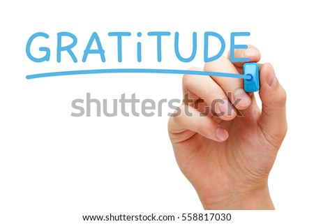 Hand writing Gratitude with blue marker on transparent wipe board.