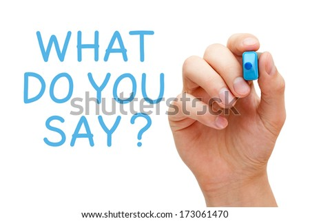 Hand writing What Do You Say with blue marker on transparent wipe board. - stock photo