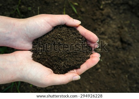 Handful of black soil above ground - stock photo