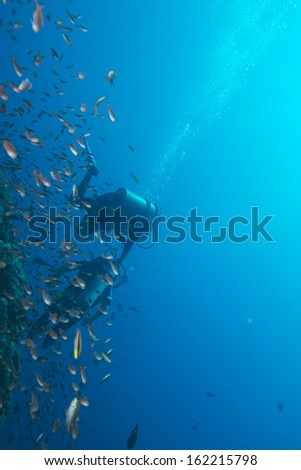 handicapped disabled leg less scuba diver on the reef background - stock photo