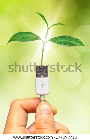 handing holding a tree growing on a usb cable / green IT / go green / - stock photo