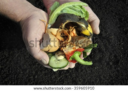 Handling a variety vegetable food waste for composting. - stock photo