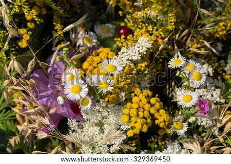 handmade  beautiful bouquets from flowers and herbs - stock photo