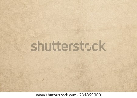 Handmade mulberry paper  ivory color. - stock photo