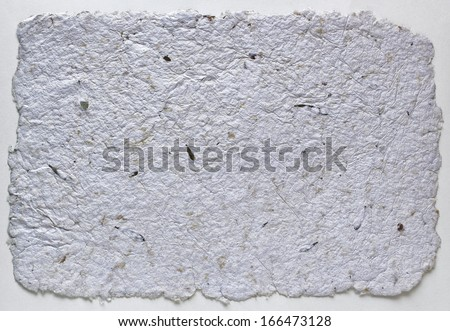 Handmade Paper Background with frayed edges and plant alements - stock photo
