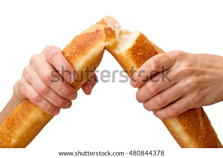 Hands breaking a baguette isolated on white background