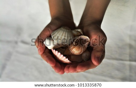 Hands carying shells