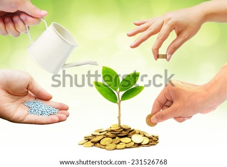 Hands helping planting trees growing on coins together with green background - Building business with csr and ethics - cooperation - stock photo