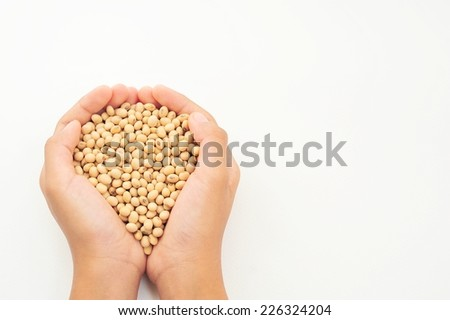 Hands holding a pile of soybeans on white background