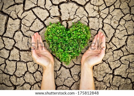 hands holding a tree arranged as a heart shape on cracked earth / growing tree / love nature / save the world / csr
