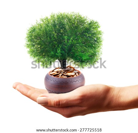 Hands holding a tree growing on coins, isolated on white - stock photo