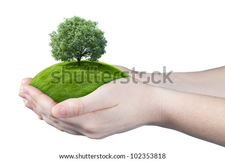 Hands holding clear green meadow with thick sole tree. Concept for growing business, ecology, freshness, freedom and other lifestyle issues. Green fields collection. - stock photo