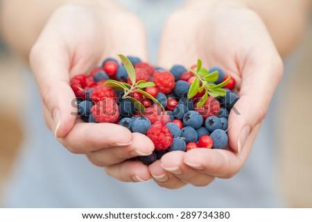 hands holding fresh berries - stock photo