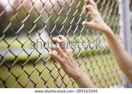 Hands holding on chain link fence - stock photo
