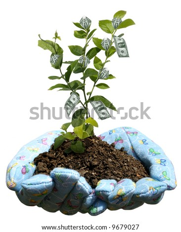 hands holding potting soil and a plant - stock photo