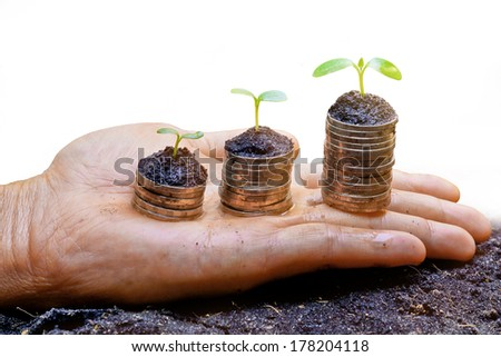hands holding trees growing on three piles of coins / csr / sustainable development / tree growing on stack of coins - stock photo