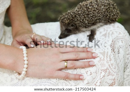 Hands of a bride with a wedding ring lying on a dress with a little hedgehog in the background - stock photo