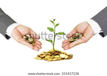 hands of a businessman giving coins to trees growing on golden coins - Business growth and wealth with csr concern - stock photo