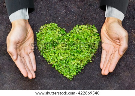 hands of businessman holding green heart shaped tree / business with environmental concern - stock photo
