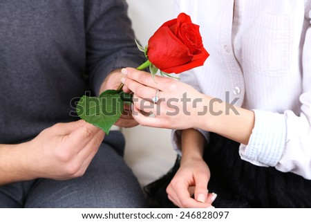 Hands of couple in love with red rose, closeup