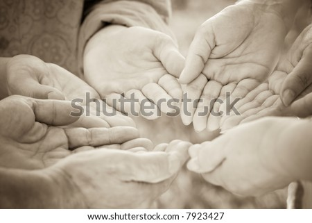 hands of family - stock photo