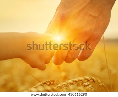 Hands of father and daughter on sun. Holding each other on wheat field - stock photo