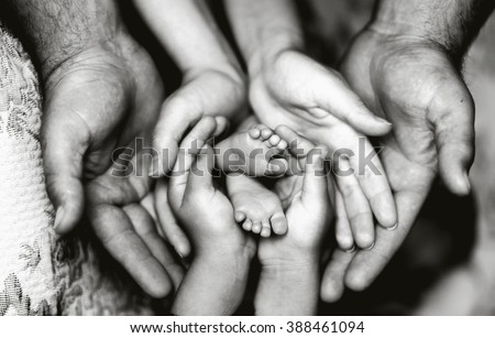 Hands of father, mother, daughter keep little feet baby. Friendly happy family, hands families together (black and white photo) - stock photo