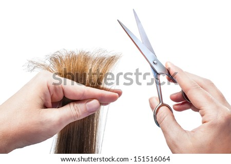 hands of hairdresser cutting woman�¢??s  hair isolated on white - stock photo