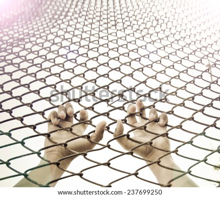 Hands of kids want freedom - stock photo